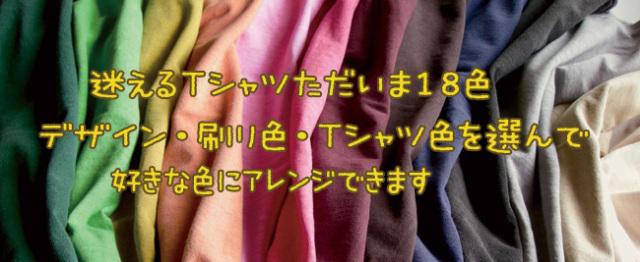 プリントを好きな色に変更アレンジ-迷えるTシャツ現在18色-hinolismo-ブラジルと日本をTシャツでデザインするお店(ヒノリズモ)